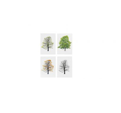 Tree Stamps Collection