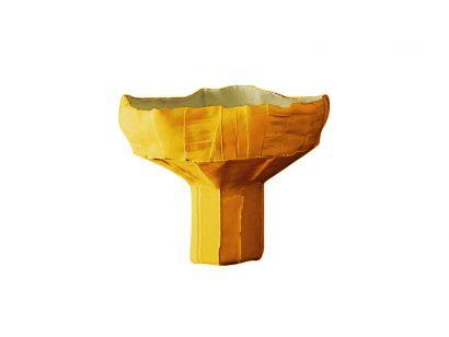 Anemone Bowl - Corteccia Ø 30 cm A10 Apricot