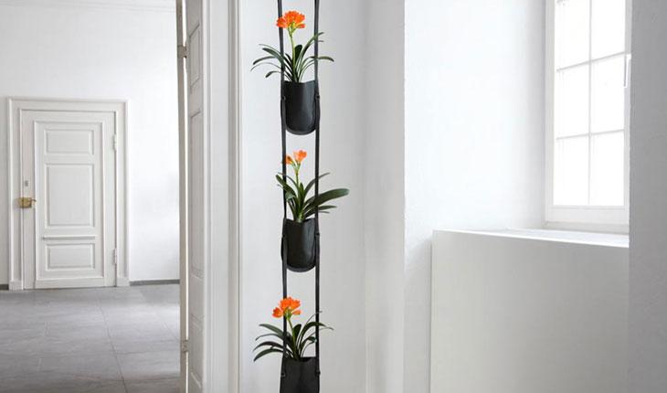 Plant Bag by Patrick Nadeau