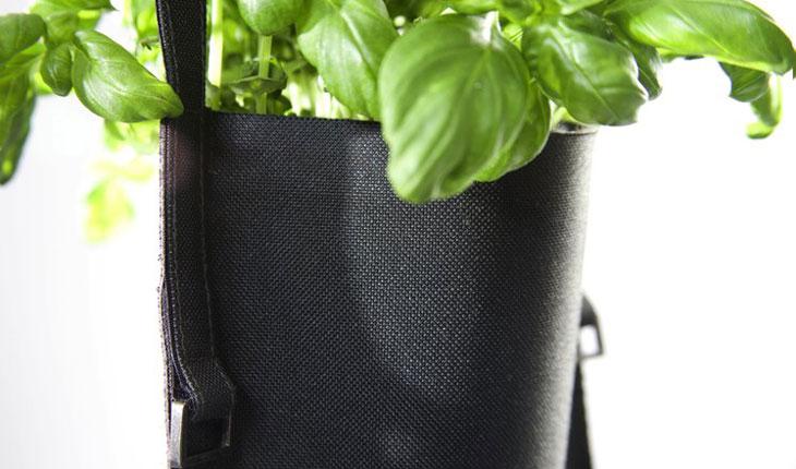 Plant Sac by Authentics